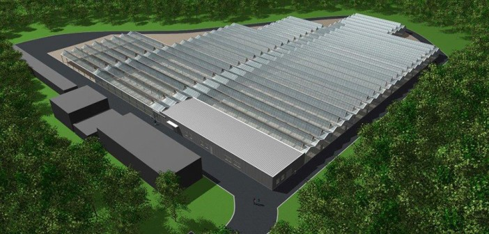 New Hyde Park glasshouse will have lots to offer