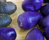 Purple potatoes reduce colon cancer risk