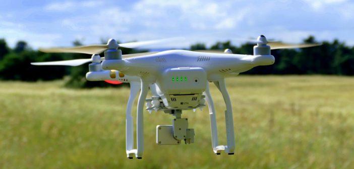 Drones could spot potato virus in fields