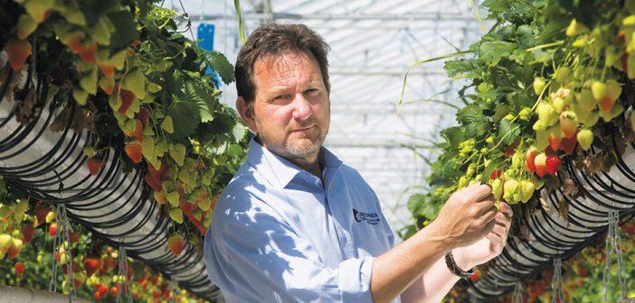 Agrovista renews three-year sponsorship agreement with National Fruit Show