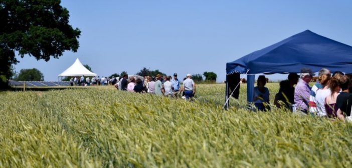 Organic sector needs to rethink farmer engagement