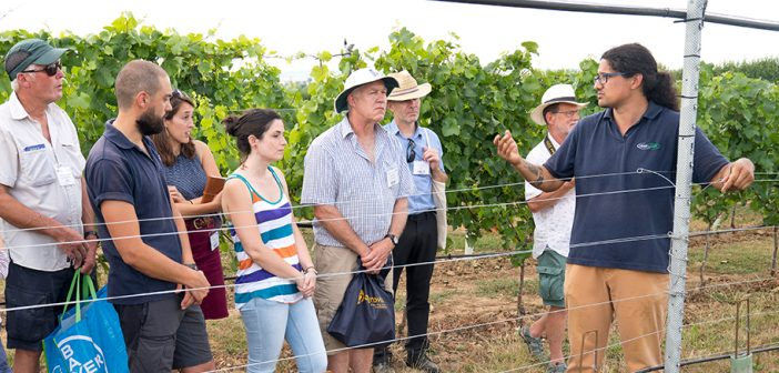 New date announced for VinestoWines 2019