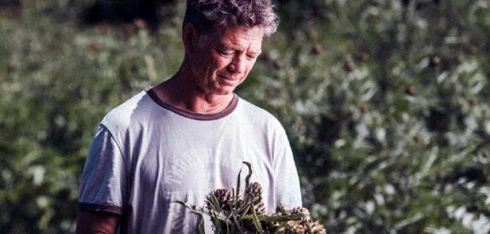 UK organics hope for European scale growth