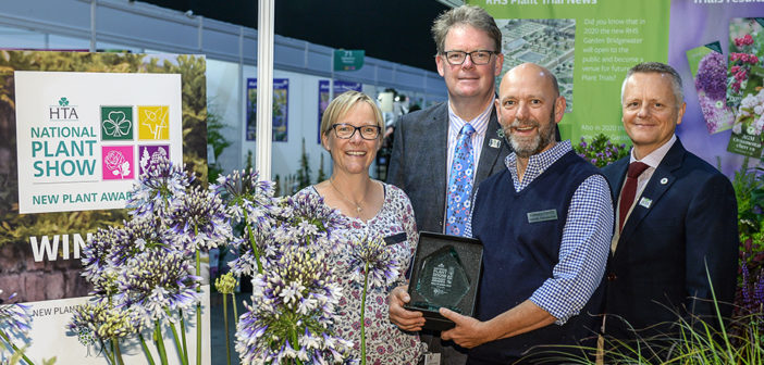 Agapanthus 'AMB001' 'Fireworks' takes  Best in Show at New Plant Awards