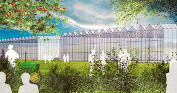 Innovation Campus plans could bear fruit
