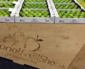 Topfruit grower JL Baxter has successful Fruit Show