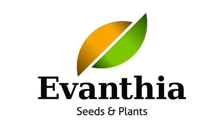 Evanthia BV - Hort News